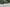 7 Motorcyclists Die in Reckless Truck Accident